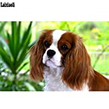 LMYLY DIY 5D Full Diamond Painting Drill Embroidery Cavalier King Charles Spaniel Stitch Cross Mosaic Needlework Pet 40X50Cm(16X20Inch)