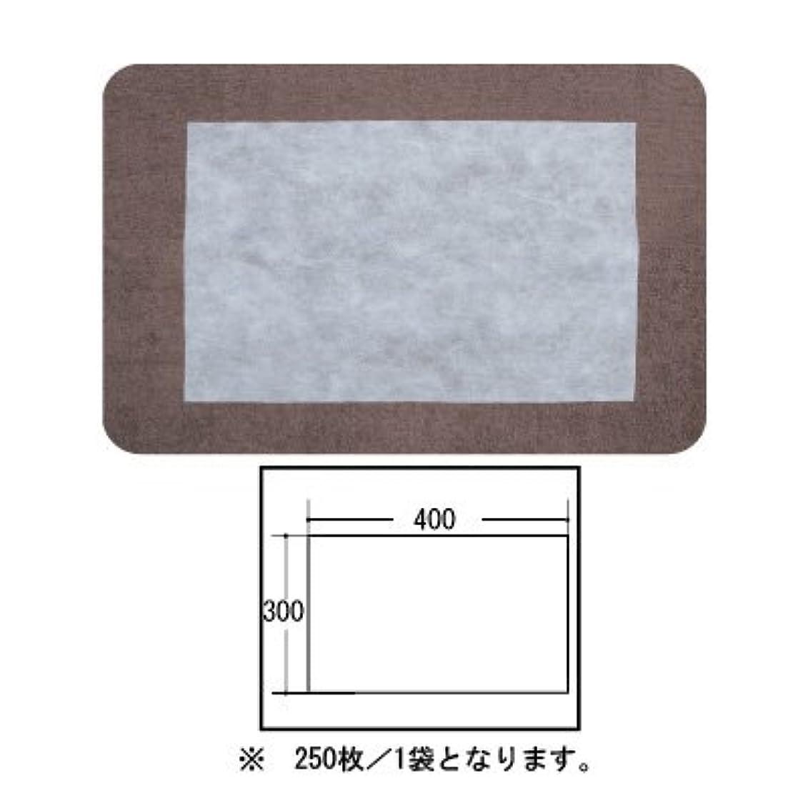 救援努力農民(ロータス)LOTUS 日本製 ピロカバー カット無し 250枚入 業務用 マルチな不織布カバー