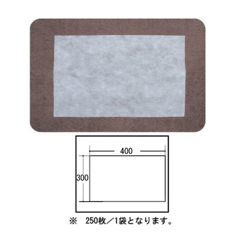 例外薄いです考案する(ロータス)LOTUS 日本製 ピロカバー カット無し 250枚入 業務用 マルチな不織布カバー