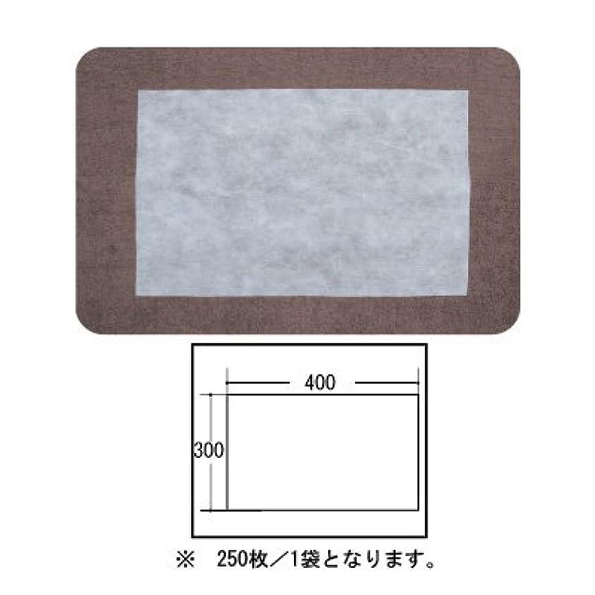アンケートガム暗黙(ロータス)LOTUS 日本製 ピロカバー カット無し 250枚入 業務用 マルチな不織布カバー