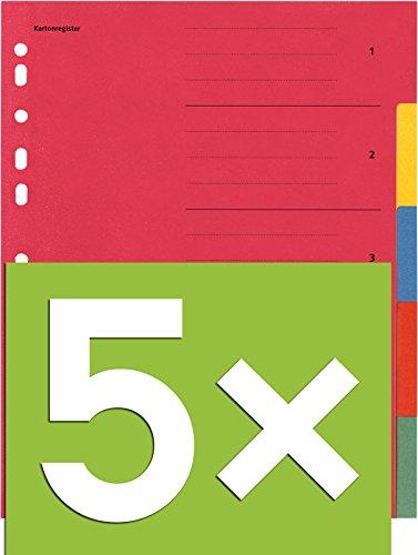 Falken Karton-Register für DIN A4 24 x 29,7 cm volle Höhe mit Organisationsdruck (5-teilig | 5er Pack)