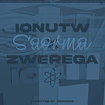 Shaorma (feat. Zwerega)