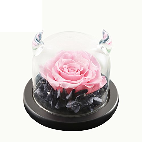 FLCP Artificial Flowers Roses/Cadeau d'Anniversaire/Valentine-D