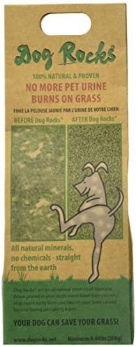 lowest Dog Rocks - Prevent Grass Burn Spots by wholesale Urine 200g - Save Your Lawn from Yellow outlet sale Marks online