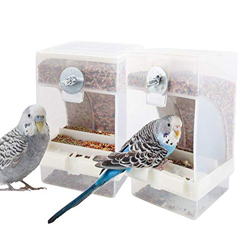 PINVNBY No-Mess Bird Feeder Parrot Automatic Feeder Seed Food Container Perch Cage Accessories for Budgerigar Canary Cockatiel Finch Parakeet Green Cheek Conures Parrotlets Lovebirds