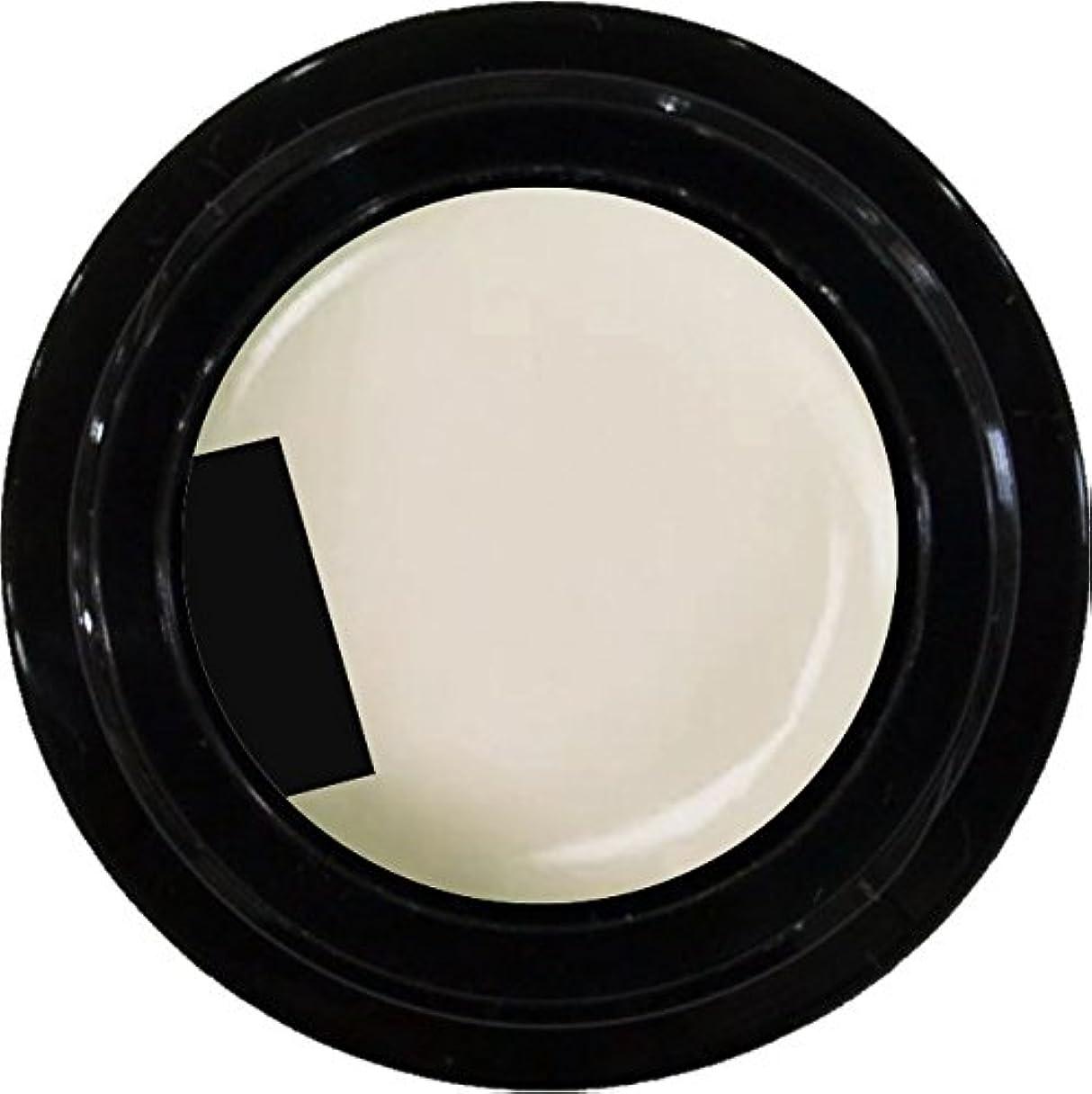 晩ごはん悲しむ革命的カラージェル enchant color gel M006 MilkyWhite 3g/ マットカラージェル M006 ミルキーホワイト 3グラム