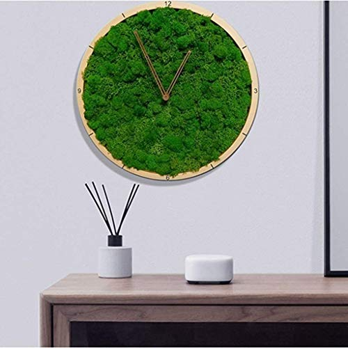 TIANYOU Wall Clock, Circular Creative Minimalism Moss Silent Operable Home Kitchen Office Clock Decorative Clock/B steampunk buy now online