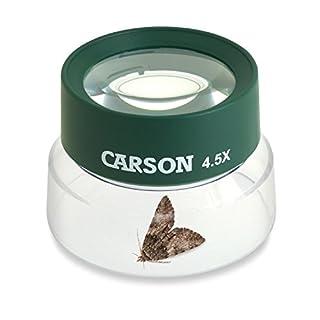 اسعار Carson Kids BugLoupe 4.5x Pre-Focused Stand Magnifier Loupe for Viewing Insects, Plants, Coins, Stamps, Maps, Fine Print and Wildlife (HU-55)