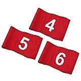 KINGTOP 番号付きゴルフフラッグ チューブ挿入 長さ8インチ x 高さ6インチ ヤード用パッティンググリーンフラッグ 420Dナイロンミニピンフラッグ