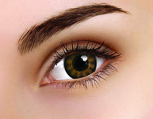 Farbige Kontaktlinse BigEyes Sexy Braun 3 Monate Einweg 14 mm stärke 0.00 von ColourVUE