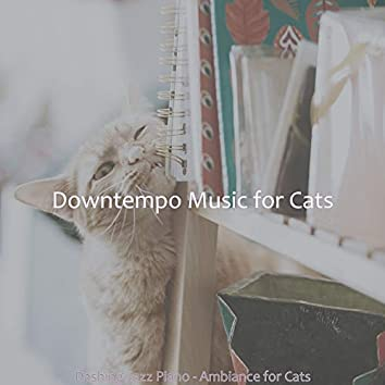 Dashing Jazz Piano - Ambiance for Cats