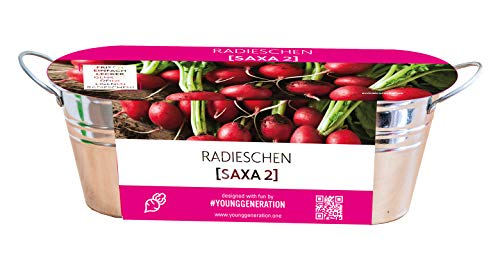 """Young Generation Anzucht-Set Zinkgefäß & Saatgut Radieschen""""Saxa 2"""""""