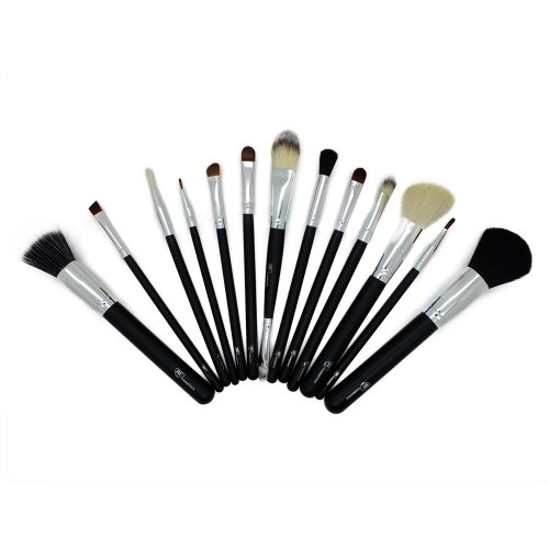 Professional 12 Piece Make up Brushes Set From Royal Care Cosmetics by Royal Care Cosmetics