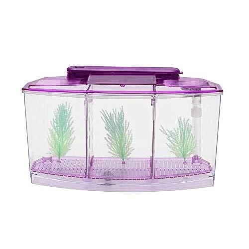 WYPDE Portable Mini Fish Tank Aquarium Fish Aquarium Réservoir LED Light Divider Filtre Eau Décor À La Maison Fish Bowl Aquatique Fish Pet Supplie (Color : Purple)