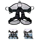 HeeJo Thicken Climbing Harness, Professional Mountaineering Safety Harness/Belt with Magnesium Alloy Connection Ring, Widen Harness for Rock Climbing Outward Bound SRT Fire Rescuing Large Size
