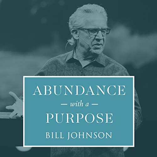 Abundance with a Purpose cover art