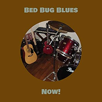 Bed Bug Blues