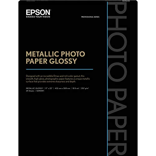 EPSS045591 - Professional Media Metallic Photo Paper Glossy