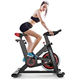 Delfy Stationary Exercise Bike, Indoor Cycling Bike with Adjustable Resistance, Large Bidirectional Flywheel, Silent Belt Driven, LCD Monitor, Fitness Bicycle for Home Gym Cardio Workout 2020 Version