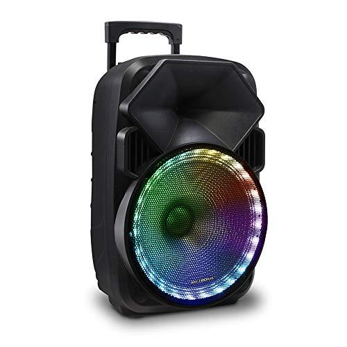 Metronic 477183 - Altavoz Bluetooth Potente 600W TWS portatil, led Lights, Toma USB, Micro USB, 2 entradas para microfono,...