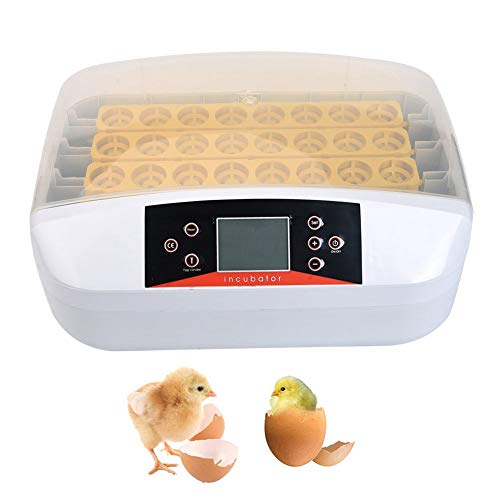 WLDOCA Incubadora Automática para 42 Huevos de gallina, Pavo, Pintada, Pato con volteador de Huevos automático, higrómetro, termostato de incubadora Digital Inteligente