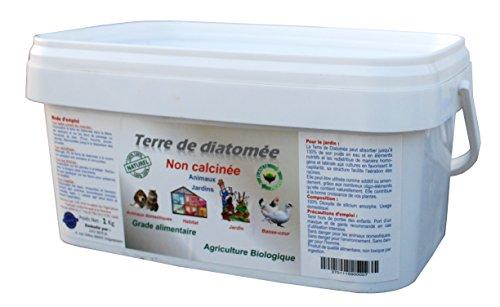 Terre de Diatomée Non calcinée/Alimentaire 1 Kg