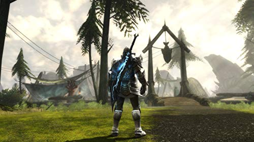 41ERNKaK2YL - Kingdoms of Amalur Re-Reckoning - PlayStation 4 Standard Edition
