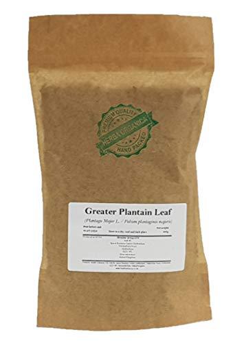 Breitwegerich Blatt / Plantago Major L / Greater Plantain Leaf # Herba Organica # Große Wegerich, Breitblättriger Wegerich (100g)