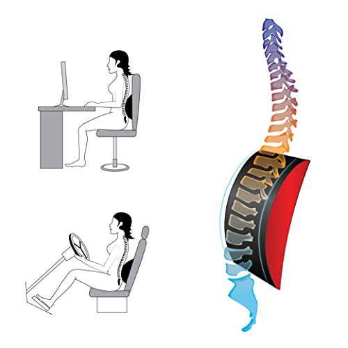Ibboo-Back-Lumbar-Support-Pillow for Office Chair, Car, 100% Pure Memory Foam, Lower Back Pain Relief, Ultimate Back Cushion for Rest, Best Comfort Experience & Healthy Posture.