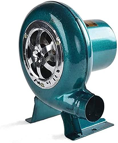 CFLDSG Soplador eléctrico de Velocidad Variable, soplador de barbacoas de 220V Barbacoa...