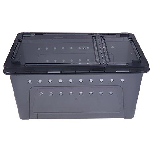 Baoblaze Transportbox Fütterungsbox für kleinere Tierarten Reptilien