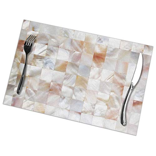 Mother of Pearl Home Placemats Set of 6 for Dining Table Washable with Non-Slip Heat Resistant Kitchen Decoration and Easy to Clean 12 X 18 Inch