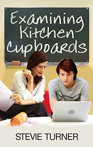 Examining Kitchen Cupboards (English Edition) by [Stevie Turner]