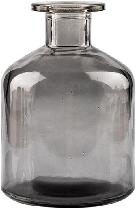 SHSM Vases Transparent Glass Japan Maker New Vase Small Ins Wind Superlatite Diameter