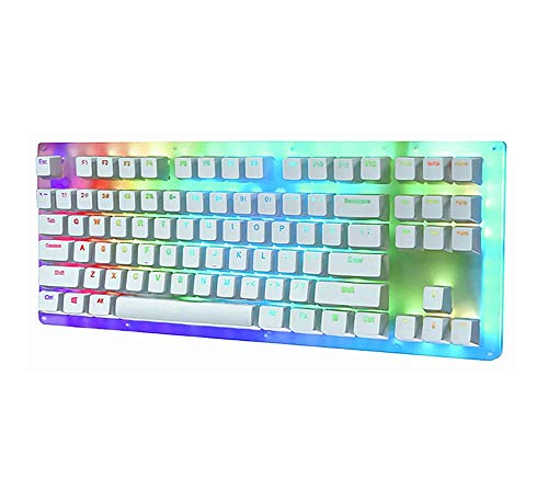Womier K87 RGB Mechanical Gaming Keyboard, 87 Keys Hot Swappable Mechanical Keyboard Type-C Wired USB 3.1 Translucent Glass Base Gateron Switch with Crystalline Base for Win/Mac (Red Switch)