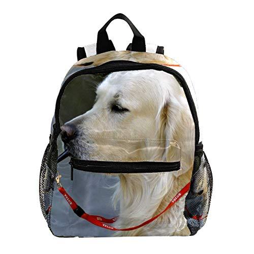 Schultasche Hundepfeife Kinderrucksack wasserdicht Schulrucksack für Mädchen Jungen Kinder 3-8 Jahre 25.4x10x30 cm