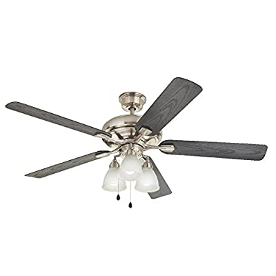 Home Decorators Collection Trentino II 60 in. Brushed Nickel Indoor/Outdoor Ceiling Fan