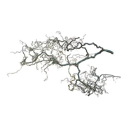 Dekozweig Korkenzieherast (ca. 100 cm x 40 cm) Frühlingsdeko Natur Korkenzieher-Naturast für Vogelkäfig - Osterdeko zum Aufhängen