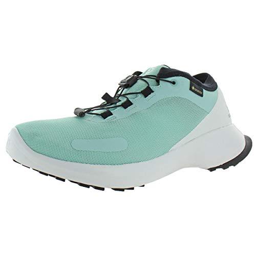 Salomon Sense Feel GTX W, Zapatillas de Running para Asfalto Mujer, Azul (Icy Morn/White/Black), 43 1/3 EU