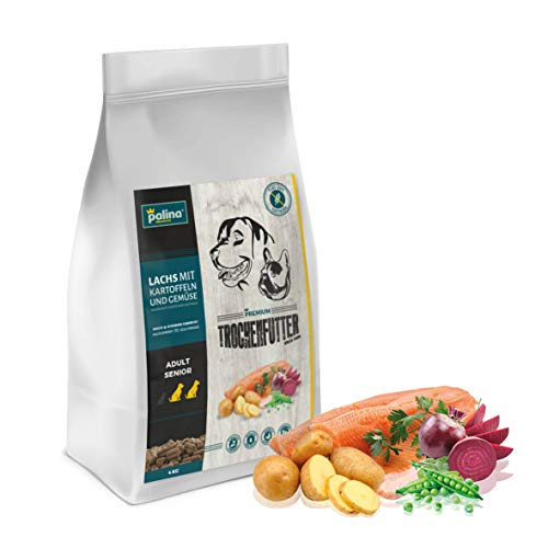 PALINA® Premium Hundefutter trocken für kleine/mittlere/große Hunde -Trockenfutter ohne Getreide - Optimal verdaulich - Glutenfrei & Kaltgepresst - Höchste Qualität (Lachs getreidefrei, 4kg)