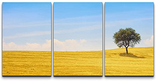"""wall26 - 3 Piece Canvas Wall Art - Tuscany Country Landscape, Olive Tree and Green Fields Montalcino, Italy, Europe - Modern Home Decor Stretched and Framed Ready to Hang - 16""""x24""""x3 Panels"""