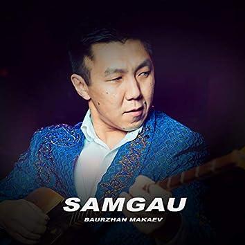 Samgau