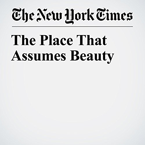 The Place That Assumes Beauty copertina