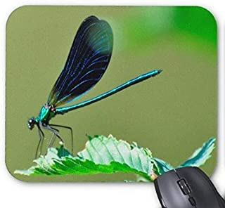 Eyes of a Dragonfly Mouse Pad, Mousepad
