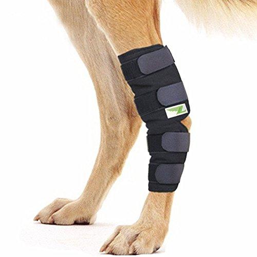 RockPet Gelenkbandage für das Hinterbein ihres Hundes (M)