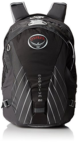 Osprey Packs Momentum 22 Daypack, Carbide Grey