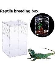 Premium trasparente Reptile Allevamento di sicurezza aria Hole design terrario acrilico chiusura magnetica tipo di alimentazione di sicurezza del rettile per animali Box per i ragni,scorpioni,serpenti