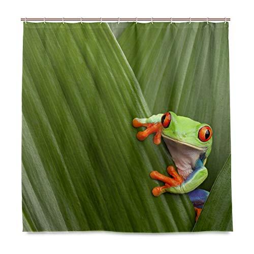 vinlin Frosch Blätter Wasserdichte Badezimmer Accessoires Duschvorhang 167,6 x 182,9 cm, Polyester, Multi, 72x72 inch