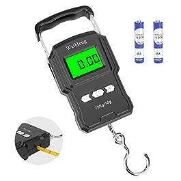 Achort Balance de pêche 165lb / 75kg Balance de pêche Portable avec écran LCD rétro-éclairé numérique, règle à Ruban à…
