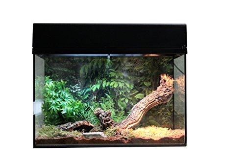 """Lucky Reptile Starter Kit 50 cm \""""Spinne + Skorpion\"""" schwarz, Terrarium-Komplettset für Spinnen und Skorpionen"""